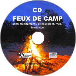 CD feux de camp